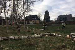 Lehrgang_Motorsäge_15