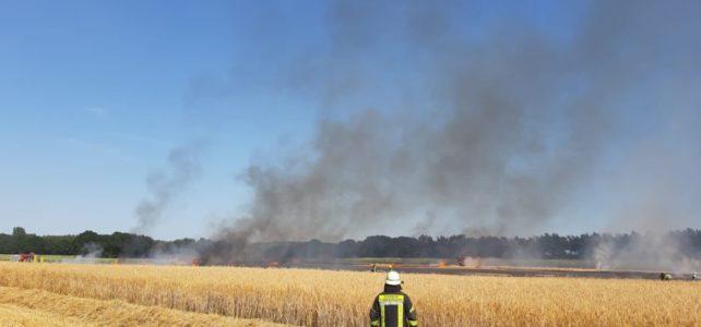 Wald- und Flächenbrand / 23.07.2019