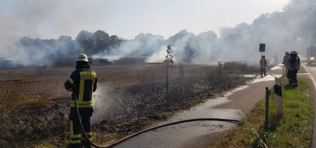 Flächenbrand Dinklage / 24.07.2019
