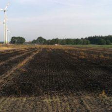 Flächenbrand Gehrde / 25.07.2019