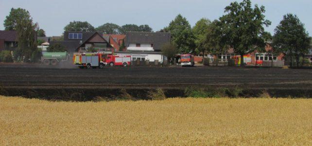 Flächenbrand Neuenkirchen / 26.07.2019