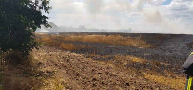 VU mit Flächenbrand (Gehrde) / 03.07.2019
