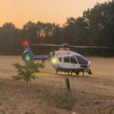 Waldbrand – alte Brandstelle / 24.07.2019