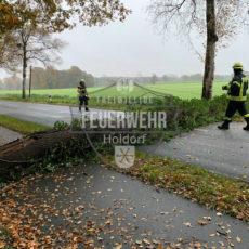 Fehlalarme und Baum auf Fahrbahn / 25.11.19