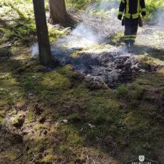 Flächenbrand im Wald / 28.05.2020